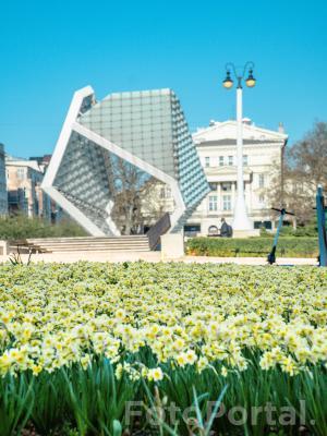 Plac Wolności wiosną