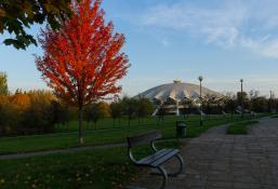 Arena jesienią