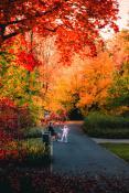 Moc kolorów w Parku Wodziczki