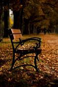 Sołacka Jesień