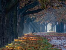 Jesień w pełni