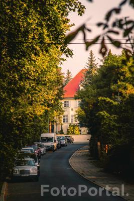Jesienna aleja na Sołaczu