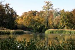 W Parku Sołackim