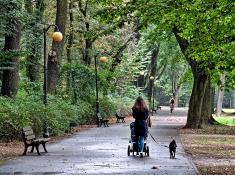 Spacer. Park Sołacki