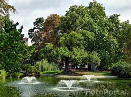 Fontanny w Parku Wilsona