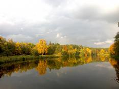 Złota jesien