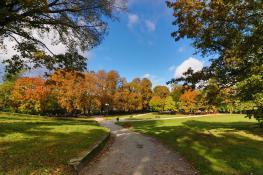 Park Wieniawskiego