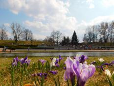 Weekend kwietniowy w parku Cytadela