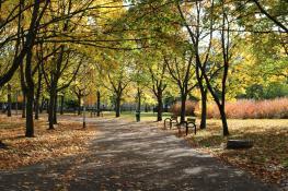 Park Wł. Czarneckiego
