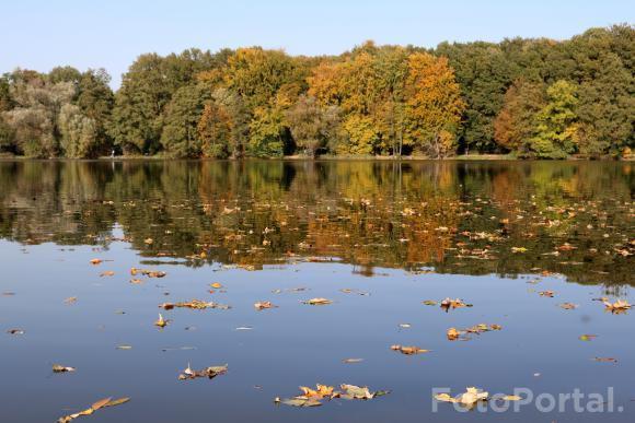 Październikowa Rusałka