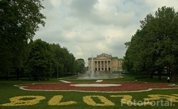 Kwiatowe dywany w Parku Mickiewicza