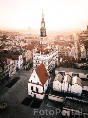 Poznań budzi się do życia
