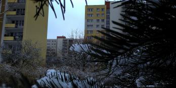 Zimowo