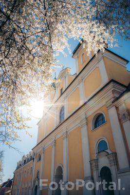 Kościół franciszkanów w wiosennej szacie