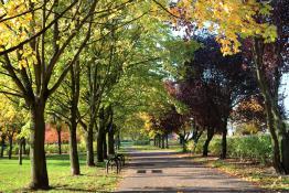 Październik w Parku Wł. Czarneckiego